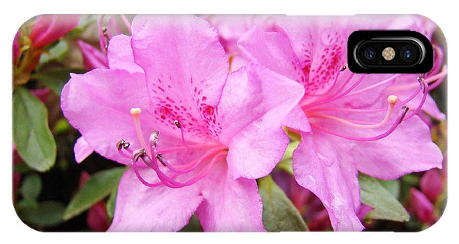 Azalea IPhone X Case featuring the photograph Azalea Garden Art Prints Pink Azaleas Flowers Baslee Troutman by Baslee Troutman