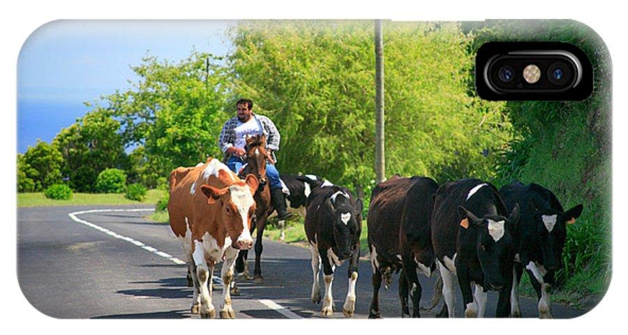 Agriculture IPhone Case featuring the photograph Azorean Farmer by Gaspar Avila