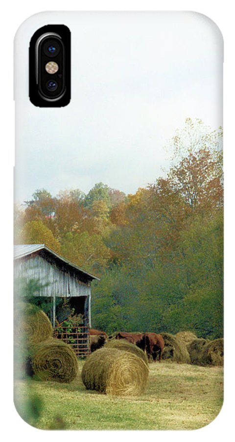 Animals IPhone X Case featuring the photograph Back At The Barn by Jan Amiss Photography