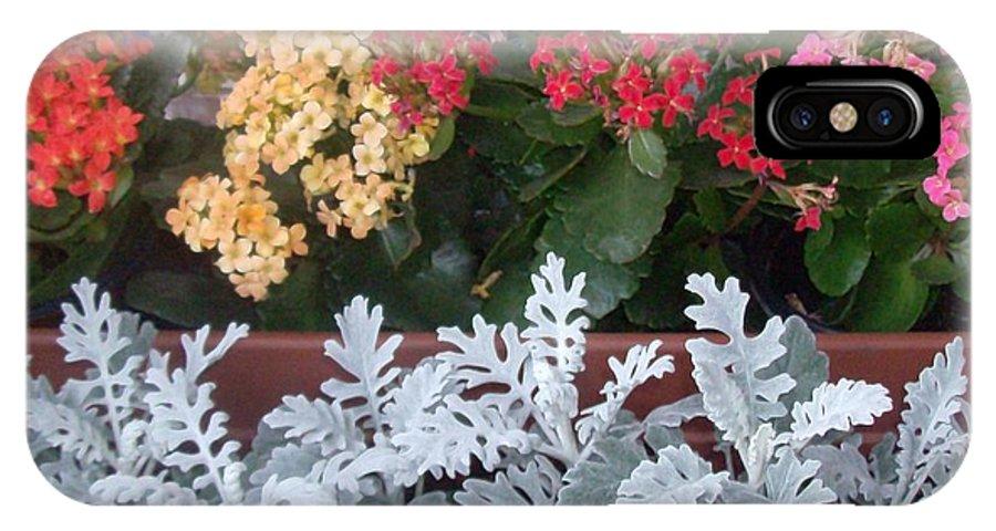 Flowers IPhone X / XS Case featuring the photograph Balcony Garden by Doris Giardini
