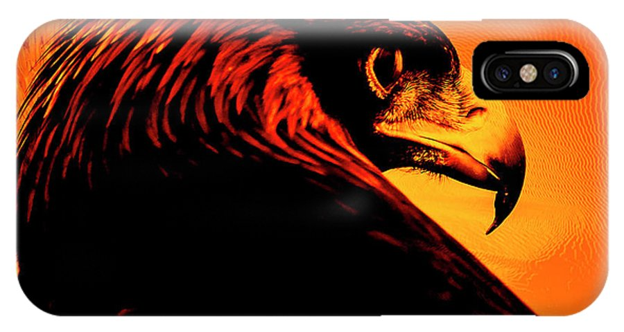 Bird Of Prey IPhone X Case featuring the photograph Bald Eagle by Caroline Vasica