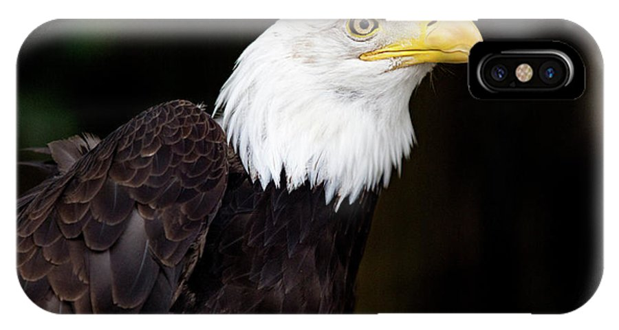 The Animal IPhone X Case featuring the digital art Bald Eagle - Pnw by Steve Owst