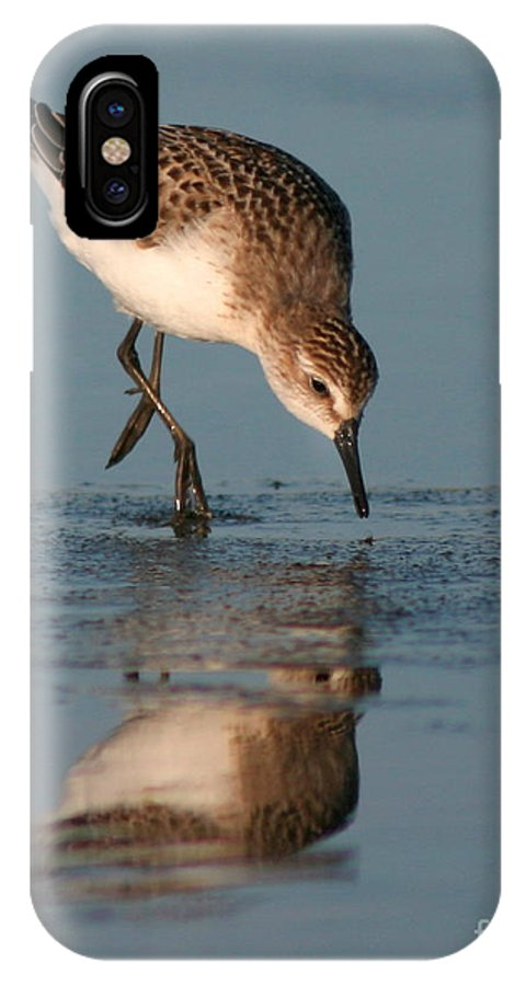Sanderling IPhone X Case featuring the photograph Ballet Feeding Of A Sanderling by Max Allen