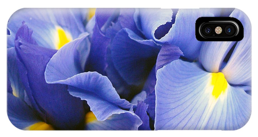 Kathy Bucari IPhone X Case featuring the photograph Ballet Of The Petals by Kathy Bucari