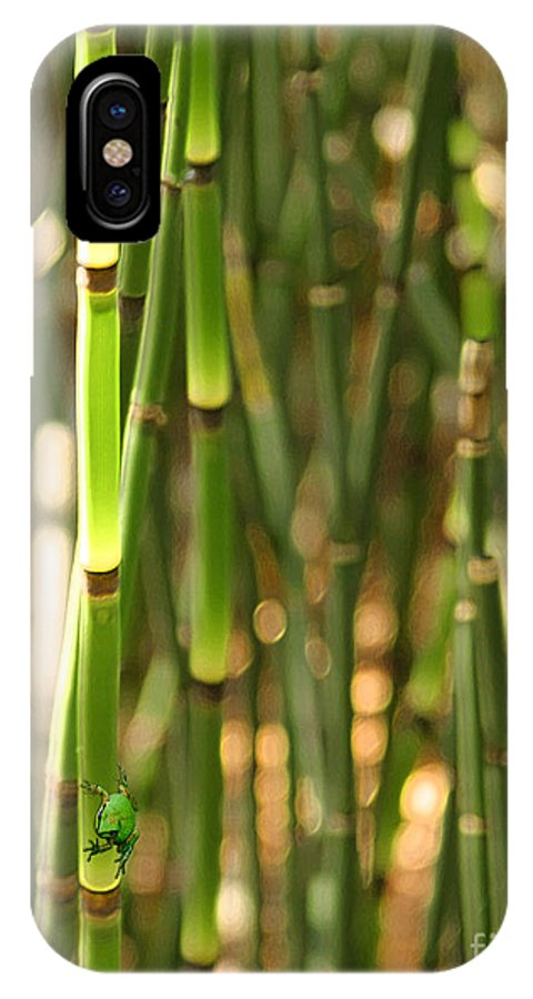 Frog IPhone X Case featuring the digital art Bamboo Frog by Lisa Redfern