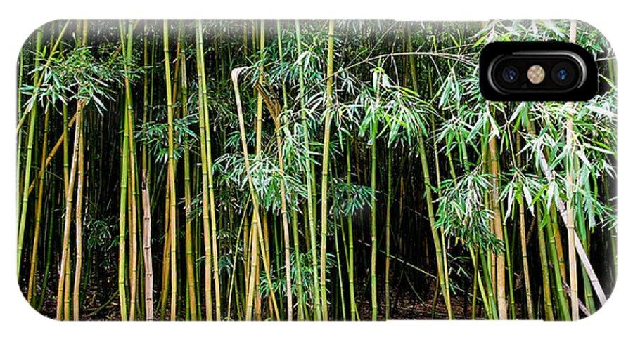 Bamboo Wind Chimes IPhone X / XS Case featuring the photograph Bamboo Wind Chimes Waimoku Falls Trail Hana Maui Hawaii by Michael Bessler