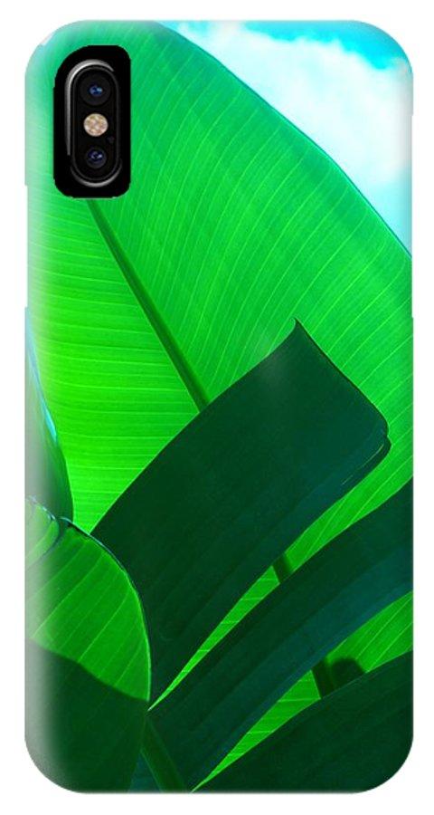 Botanical IPhone Case featuring the photograph Banana Aqua by Florene Welebny
