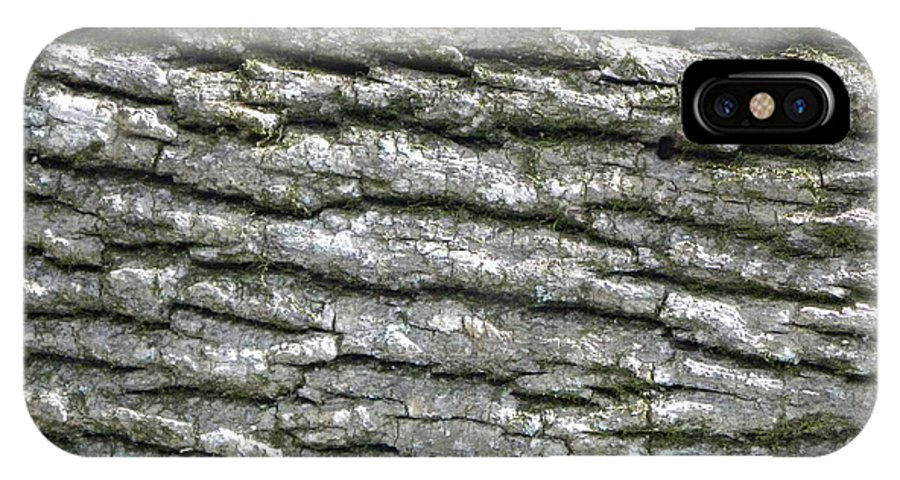 Tree IPhone X Case featuring the photograph Bark by Shannon Turek