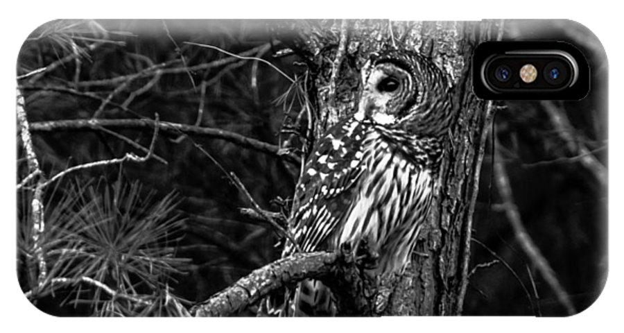 Wildlife IPhone X Case featuring the photograph Barred In Black And White by Alicia Collins