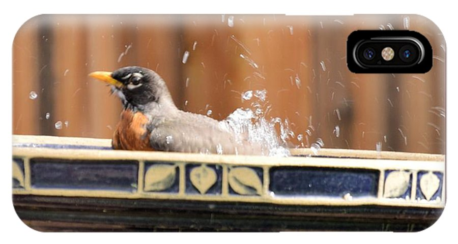 Robin IPhone X Case featuring the photograph Bath Time by Wendy Fox