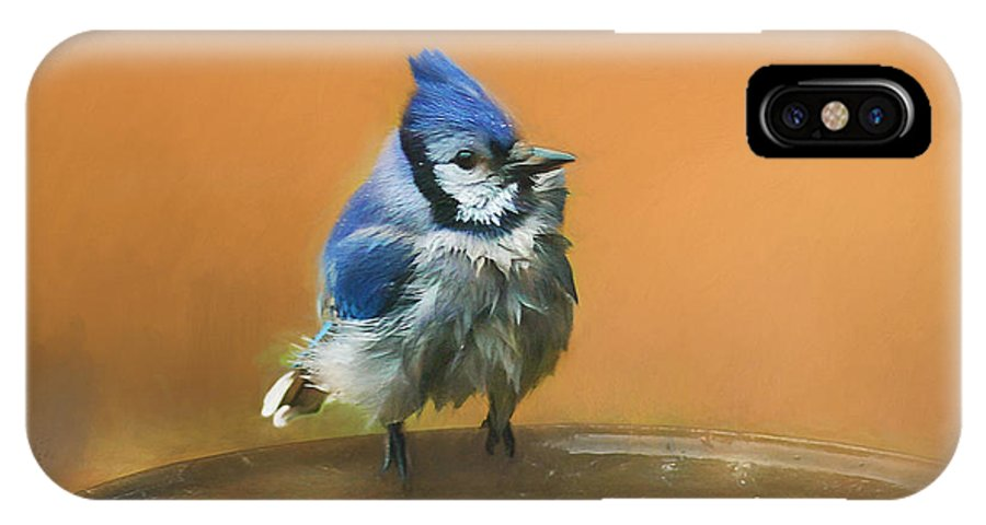 Blue Jay IPhone X Case featuring the photograph Bathing Blue Jay by Clare VanderVeen