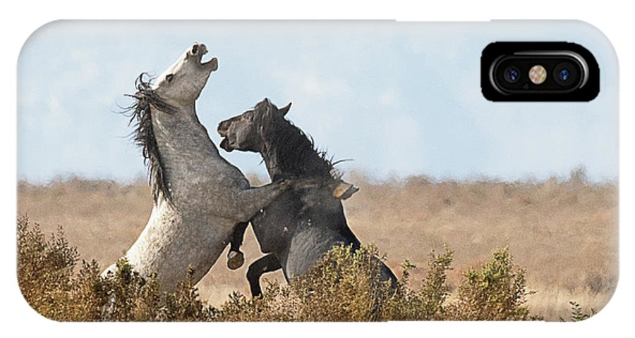 Mammal IPhone X Case featuring the photograph Battle In The Bush by Dennis Hammer