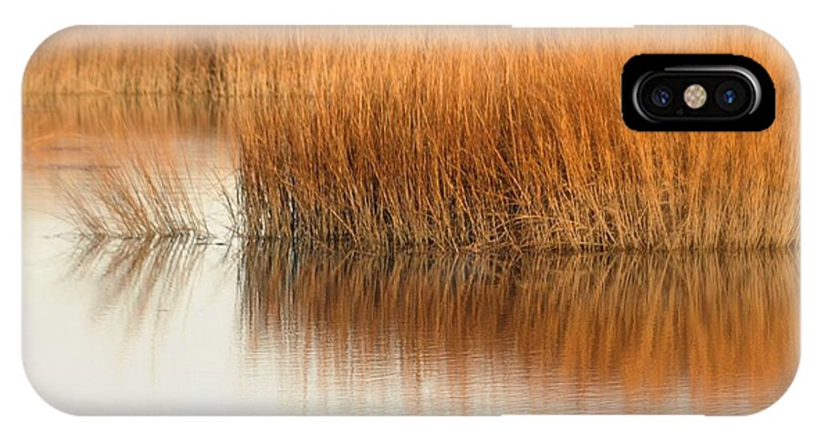 Marsh IPhone X Case featuring the photograph Bay by Diana Angstadt