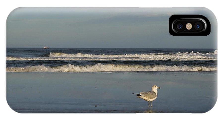 Sea Ocean Gull Bird Beach Reflection Water Wave Sky IPhone X Case featuring the photograph Beach Patrol by Andrei Shliakhau