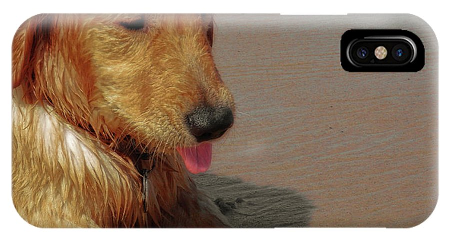Dog IPhone X Case featuring the photograph Beach Pup by JAMART Photography