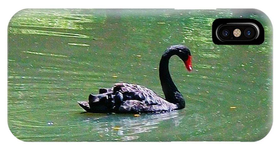 Black Swan IPhone X Case featuring the digital art Beautiful Black Swan by Robin Cordero