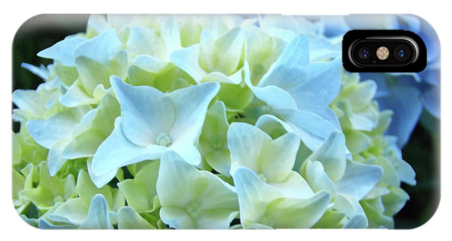 Hydrangea IPhone X Case featuring the photograph Beautiful Blue Hydrangea Floral Art Prints Creamy White Pastel by Baslee Troutman