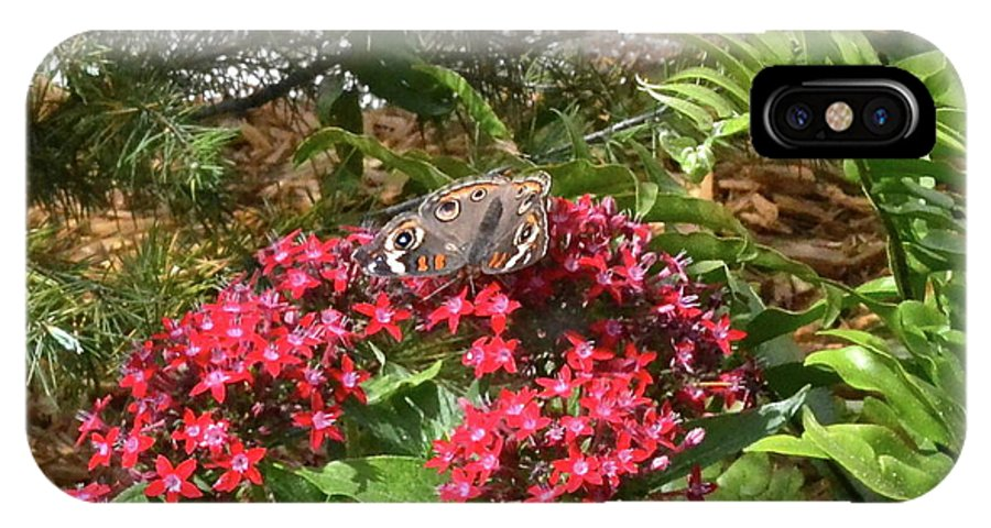 Butterfly IPhone X Case featuring the photograph Beautiful Buckeye by Carol Bradley