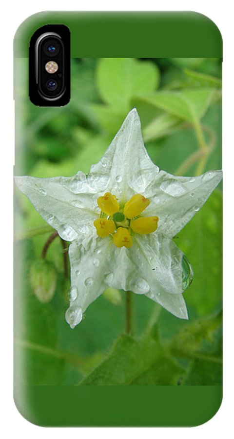 Green Flower White Water Drop IPhone Case featuring the photograph Beauty In All Sizes by Luciana Seymour