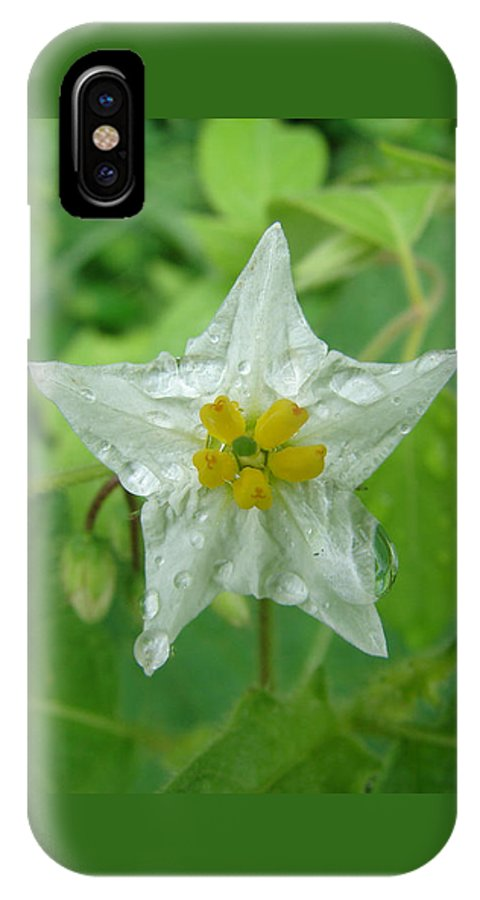 Green Flower White Water Drop IPhone X Case featuring the photograph Beauty In All Sizes by Luciana Seymour