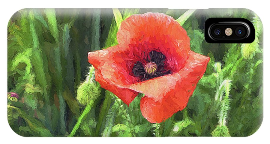 One IPhone X Case featuring the digital art Beauty Of A Poppy by Louloua Asgaraly