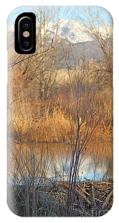 Sunset IPhone X Case featuring the photograph Beaver Dam At Sunset In Colorado      by Dale Jackson