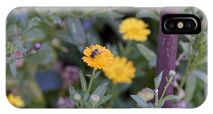 Animal IPhone X Case featuring the photograph Bee at work by Adrian Bud