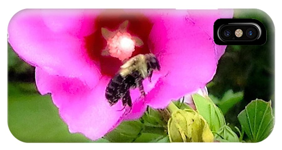 Photograph IPhone X Case featuring the photograph Bee On Edge Of A Hibiscus Flower by Debra Lynch