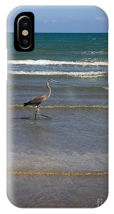 Nature IPhone X Case featuring the photograph Being One With The Gulf - In Step by Lucyna A M Green
