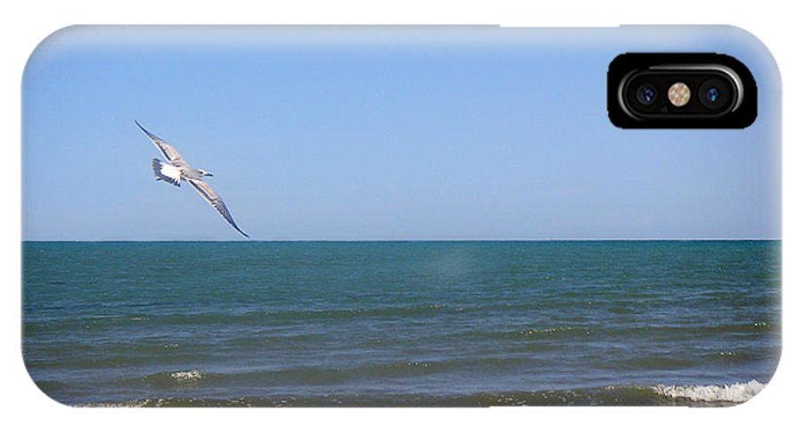 Nature IPhone X Case featuring the photograph Being One With The Gulf - Soaring by Lucyna A M Green