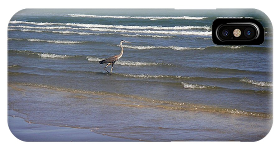 Nature IPhone Case featuring the photograph Being One With The Gulf - Wading by Lucyna A M Green