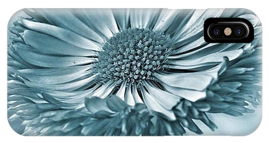 Beautiful IPhone X Case featuring the photograph Bellis In Cyan  #flower #flowers by John Edwards