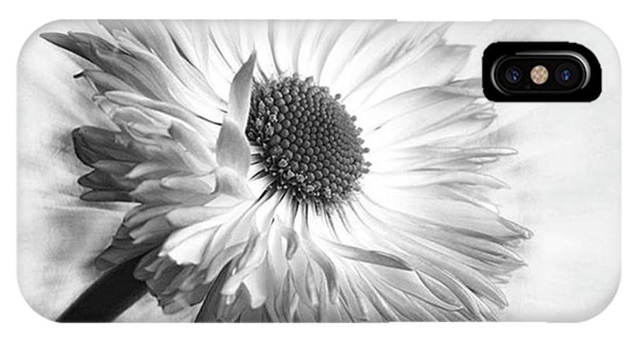 Beautiful IPhone X Case featuring the photograph Bellis In Mono  #flower #flowers by John Edwards