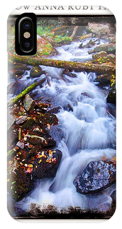 Landscape IPhone X Case featuring the photograph Below Anna Ruby Falls by Peter Muzyka
