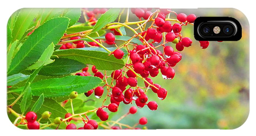 Macro IPhone X Case featuring the photograph Berries Macro by Amie Ebert