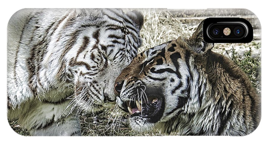 Tiger IPhone X Case featuring the photograph Best Friends by Keith Lovejoy