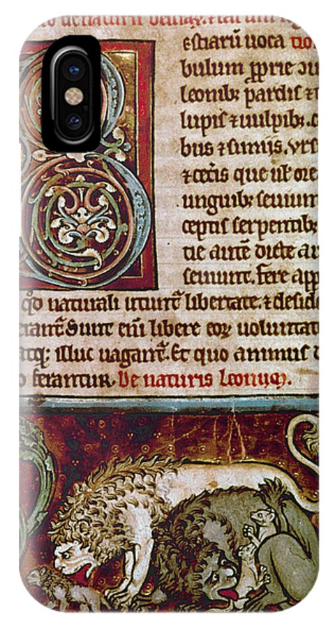 12th Century IPhone X Case featuring the photograph Bestiary: Lion by Granger