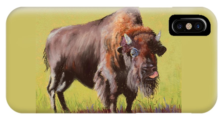 Buffalo IPhone X Case featuring the painting Big Boy by Nancy Jolley