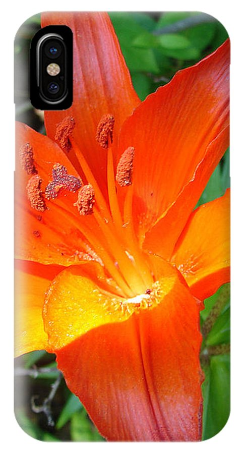 Orange Flower Yellow IPhone X Case featuring the photograph Big Orange by Luciana Seymour