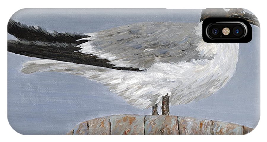 Seagull IPhone X Case featuring the painting Bimini Gull by Danielle Perry
