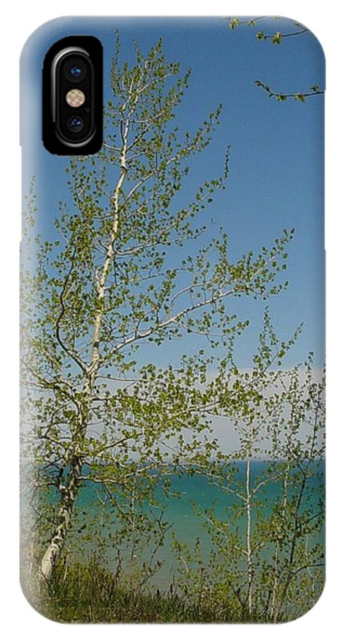 Birch Tree IPhone X Case featuring the photograph Birch Tree Over Lake by Anita Burgermeister
