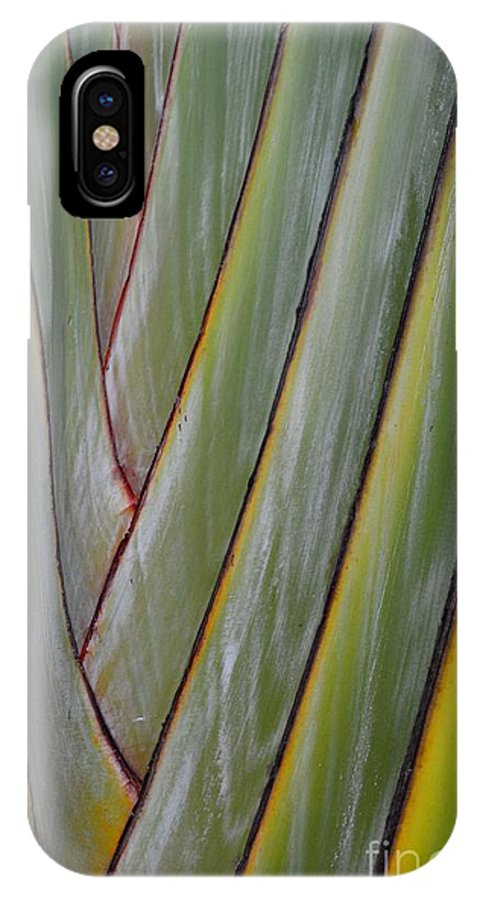 Bird Of Paradise IPhone X Case featuring the photograph Bird Of Paradise 2 by Jan Prewett