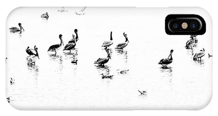 Nature IPhone X Case featuring the photograph Bird Party by Norma Warden