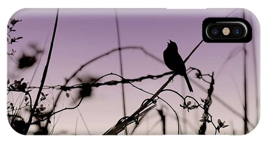 Silhouette IPhone X Case featuring the photograph Bird Sings by Angie Tirado