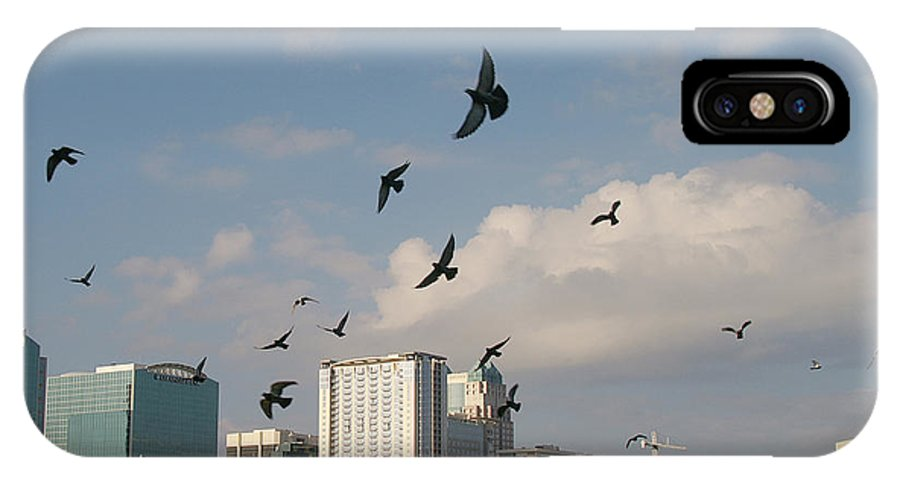 Building IPhone X Case featuring the photograph Birded Dowtown by Jack Norton