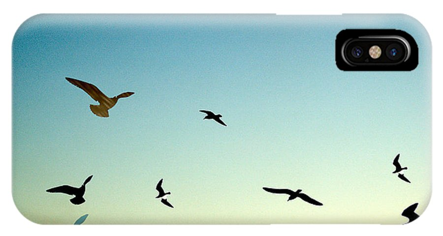 Seagulls IPhone X Case featuring the photograph Birds by Barry Doherty