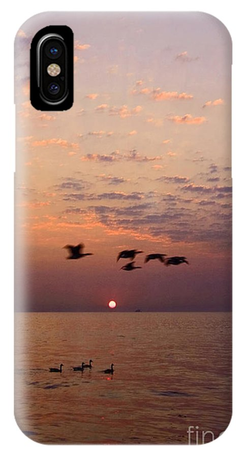 Ducks IPhone Case featuring the photograph Birds Flying And Floating At Sunrise by Sven Brogren