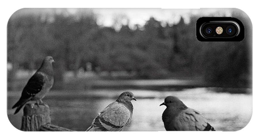 Bird IPhone X Case featuring the photograph Birds I by Olivier De Rycke