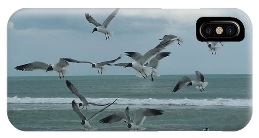 Birds IPhone X Case featuring the photograph Birds In Flight by Barb Montanye Meseroll