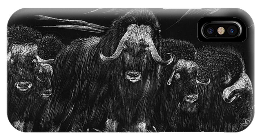 A Herd Of Bisons Gather On A Snowy Plane- Scratch Board IPhone X Case featuring the painting Bisons by Mui-Joo Wee